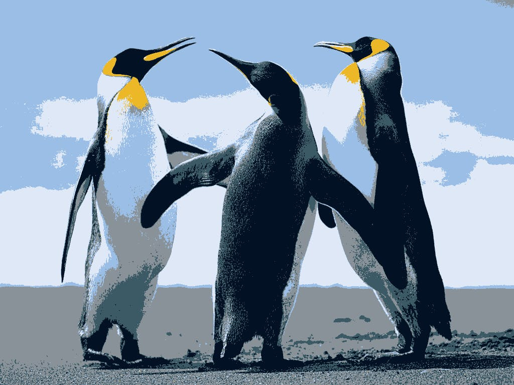 Penguin_post.png