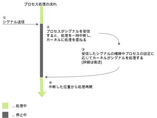 all_signal (2)-flow.jpg