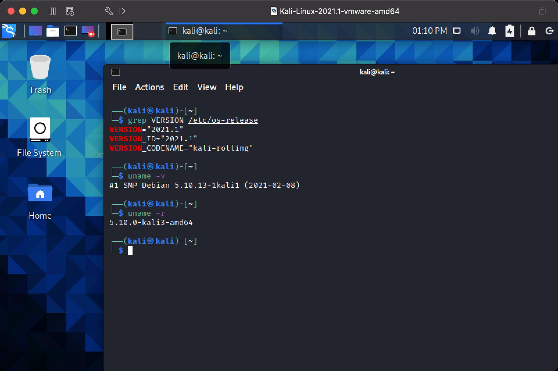 VMware Fusion.png
