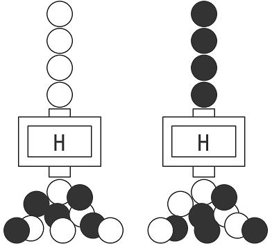 H回路.png