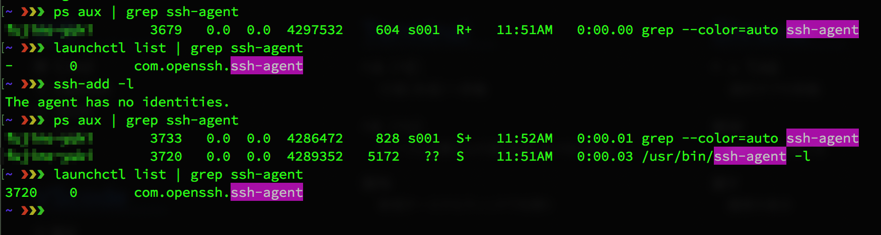 terminal-ssh-agent.png