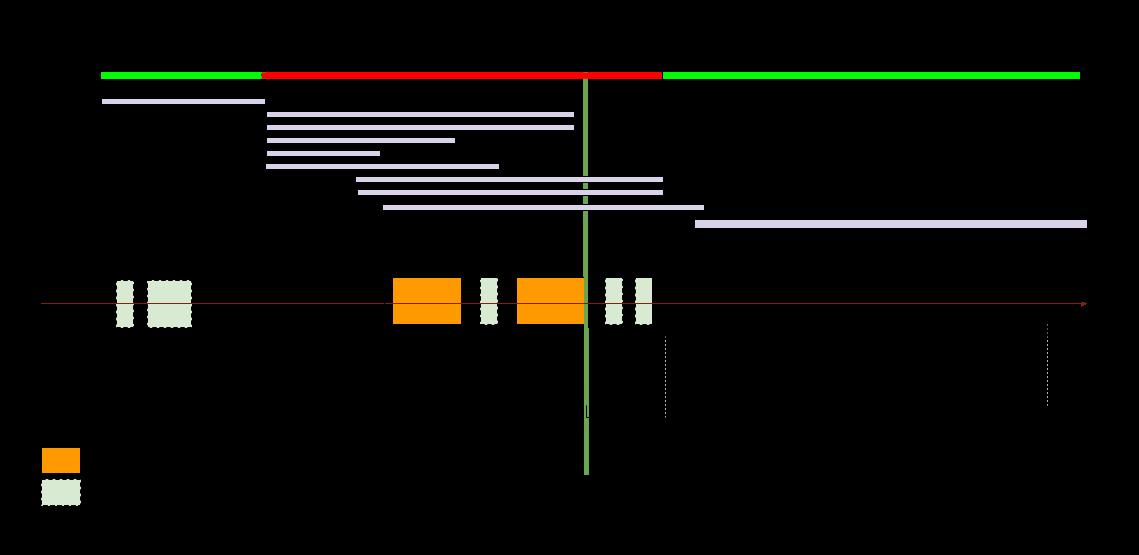 tti-diagram.png