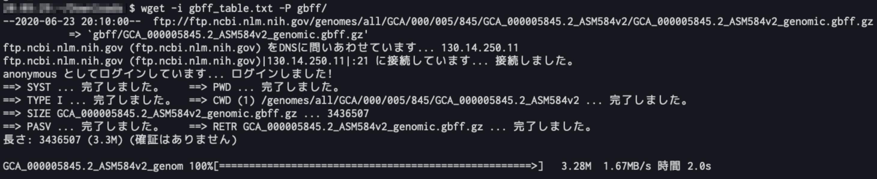 1__bash.png