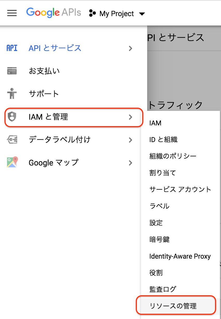 googleAPIPre1.png