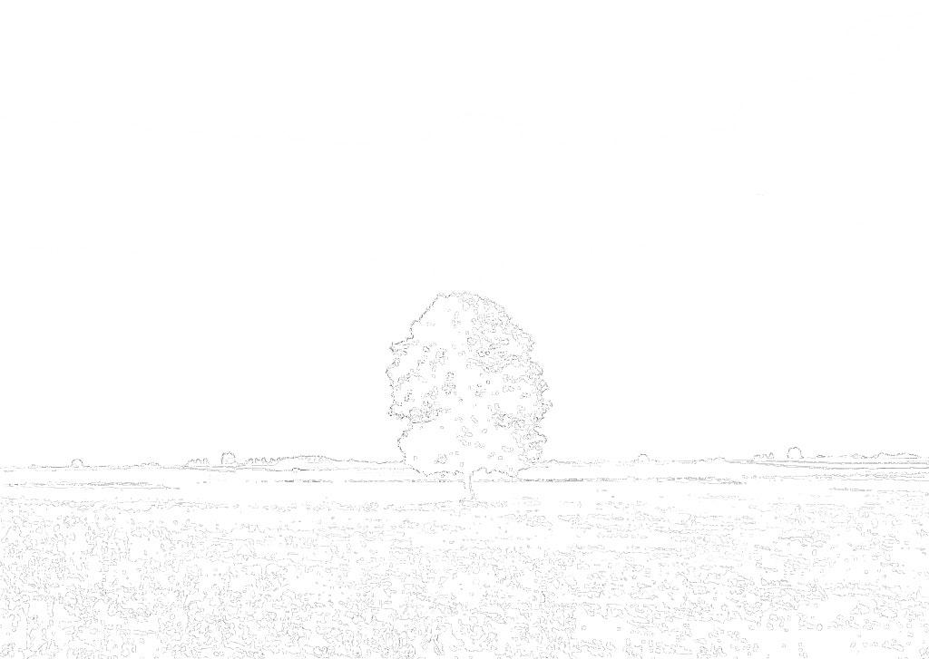 km_and_median.jpg