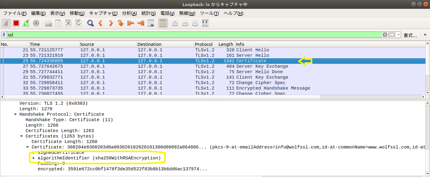 wireshark_rsa.png
