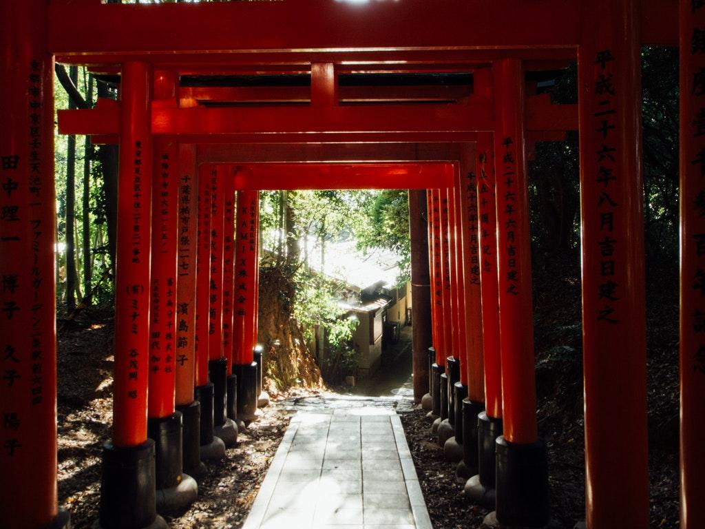 torii-1.jpg