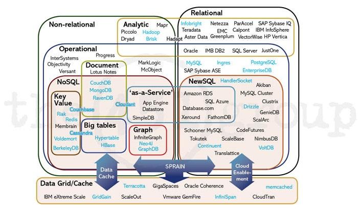 DBMSの分類